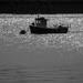 Estuary by peadar