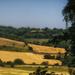 Summer Fields by fbailey
