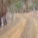 The Path Ahead - ICM by kgolab