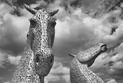 27th Jul 2019 - The Kelpies - a different perspective