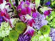 28th Jul 2019 - Methuselah Flowers