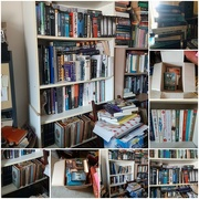 29th Jul 2019 - Big Book Clean-Out Part II