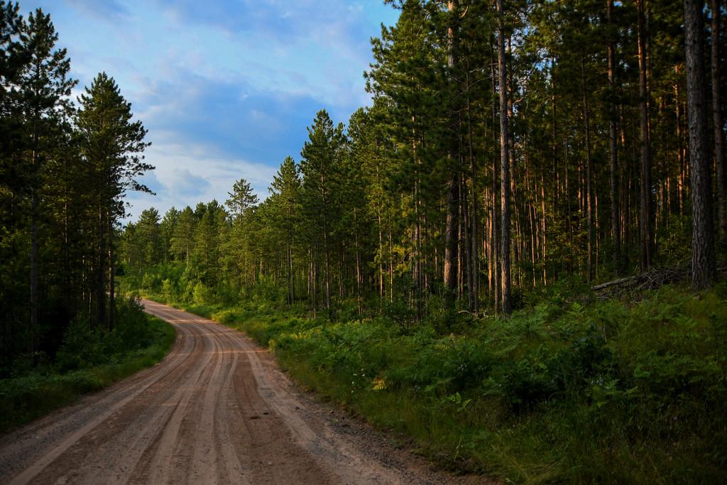Webb Lake Road by kareenking