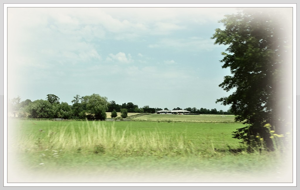The Countryside  by beryl