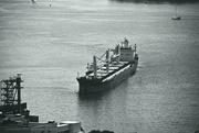 29th Jul 2019 - bulk cargo carrier