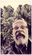 16th Jun 2017 - How To Look Like A Weirdo