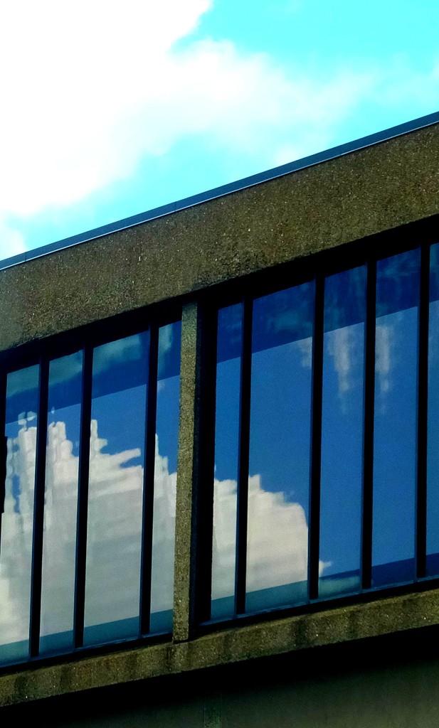 Reflecting by linnypinny