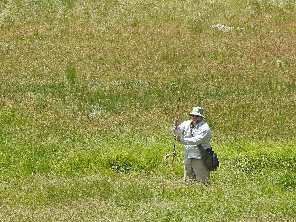 Meadow Fishing by janeandcharlie