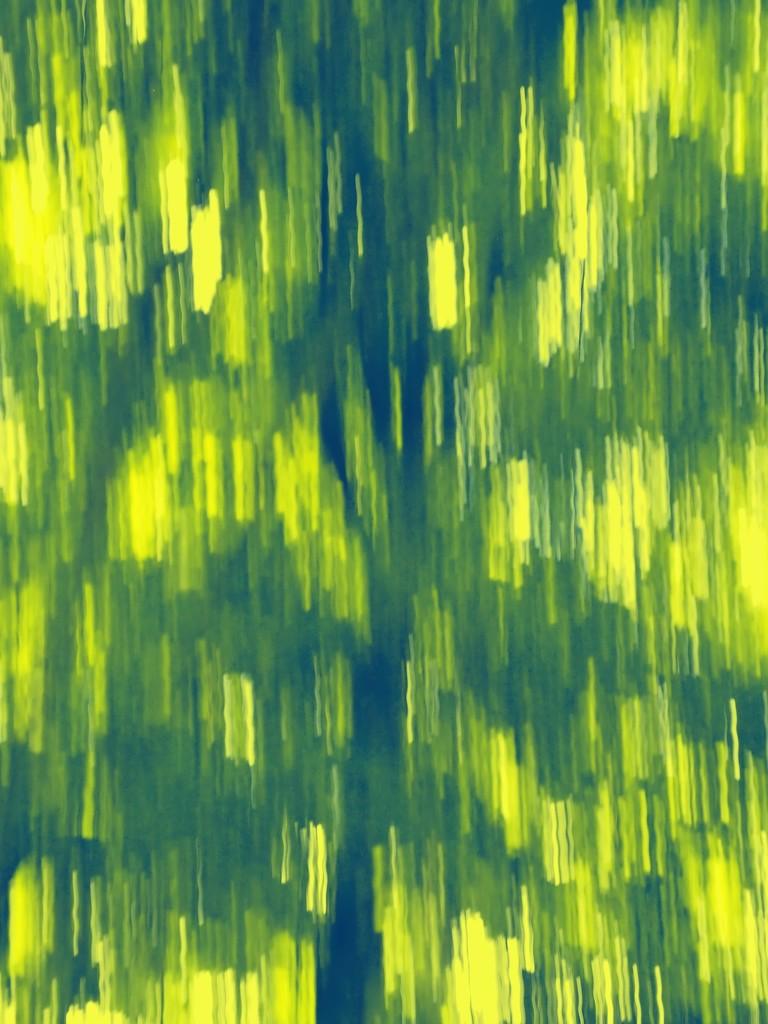 tree icm by blueberry1222