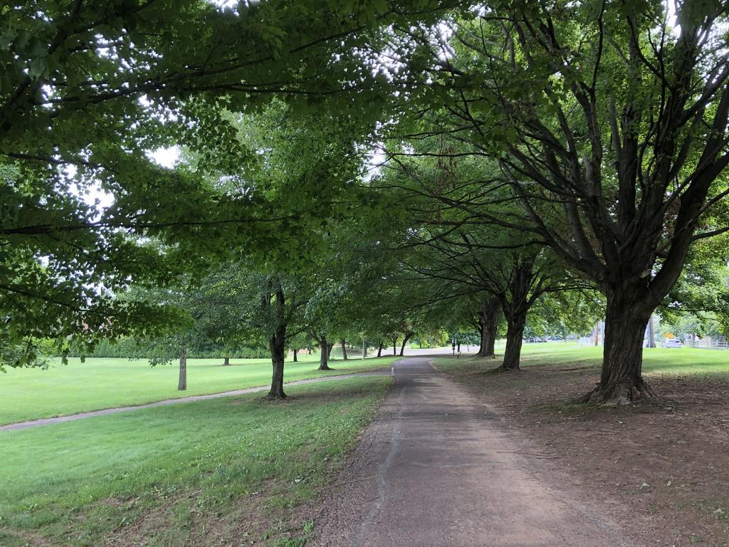 The Walk I'll Miss 2 by loweygrace