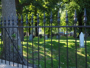 2nd Aug 2019 - Fence