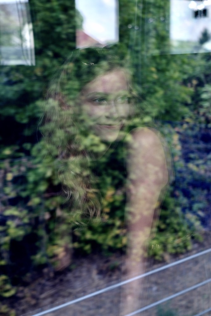Reflection in the train by vincent24