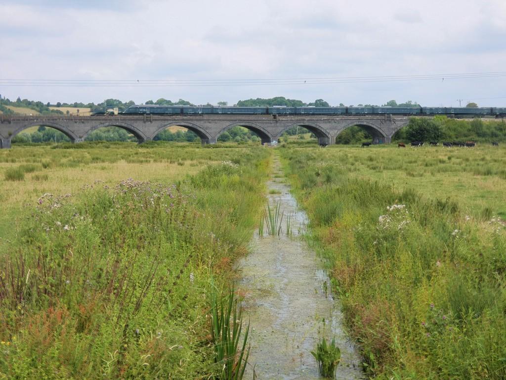 Langport rail viaduct by julienne1