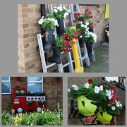 1st Aug 2019 - Green Fingered Fire Fighters