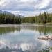 Tranquility:  Jenny Lake by jyokota