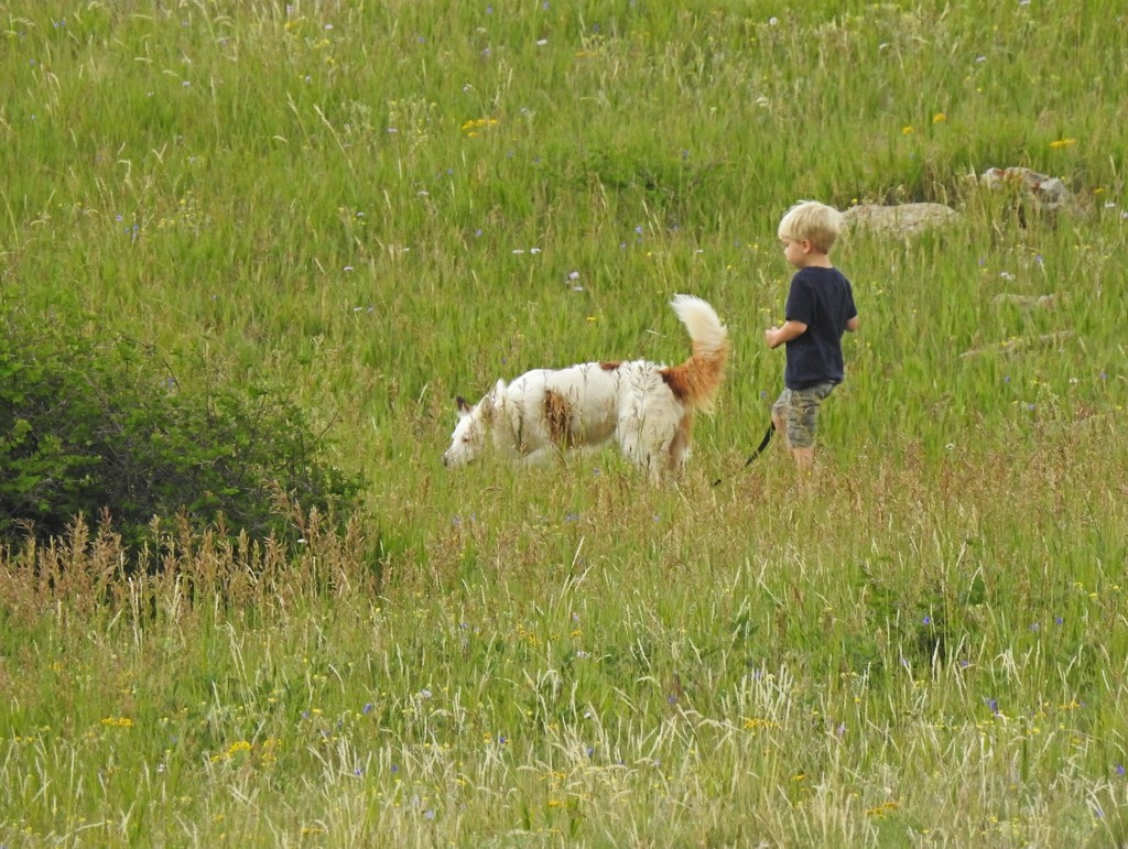 A Boy and His Dog by janeandcharlie