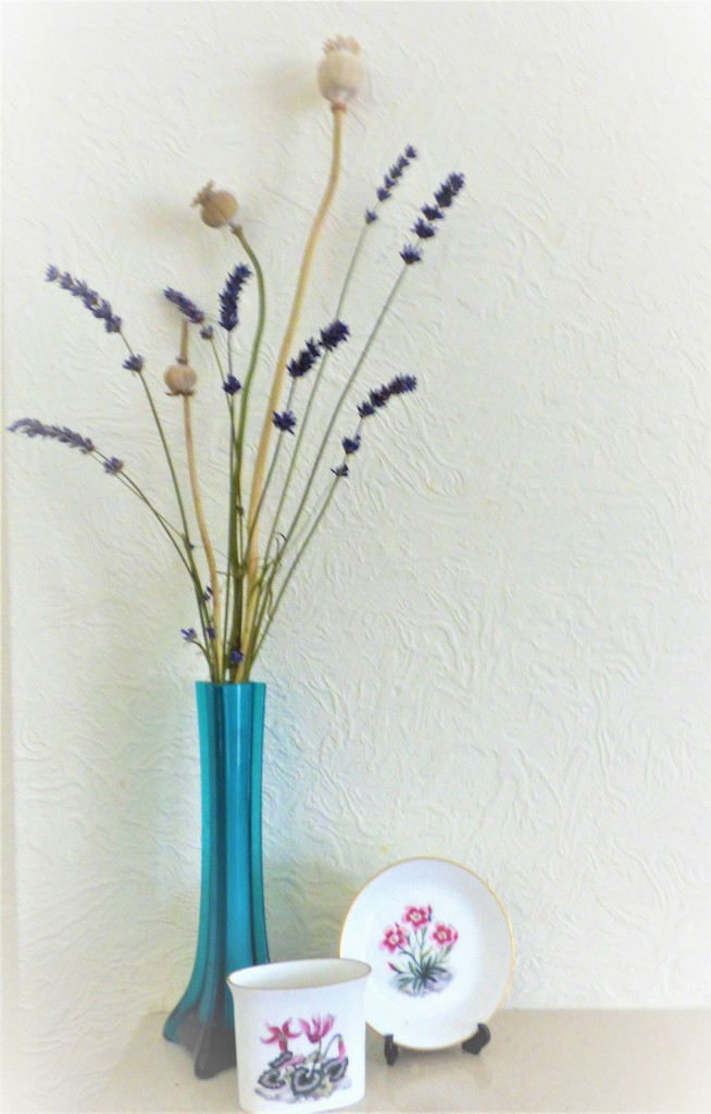 Lavender and poppy seed heads  by beryl