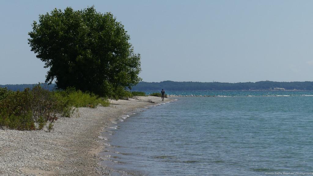 A Lone Walk on High Island by taffy