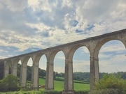 3rd Aug 2019 - Calstock viaduct