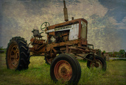 7th Aug 2019 - Tractor Treasure