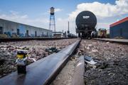 7th Aug 2019 - (Day 175) - CJ on the Railyard