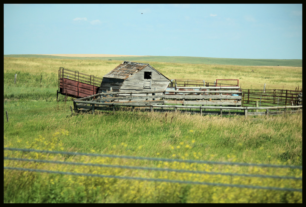 Someone's home on the Prairie by ladykassy46