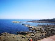23rd Jul 2019 - Cullercoats Bay