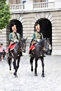 8th Aug 2019 - Hussar patrols