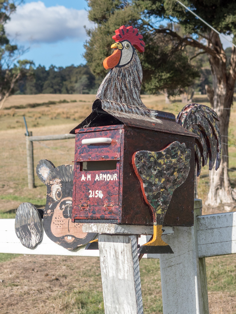 Creative letterbox by gosia