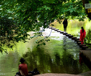 11th Aug 2019 - The stepping stones at Box Hill