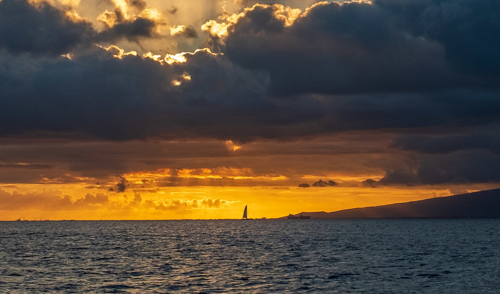 Sunset by nicoleweg