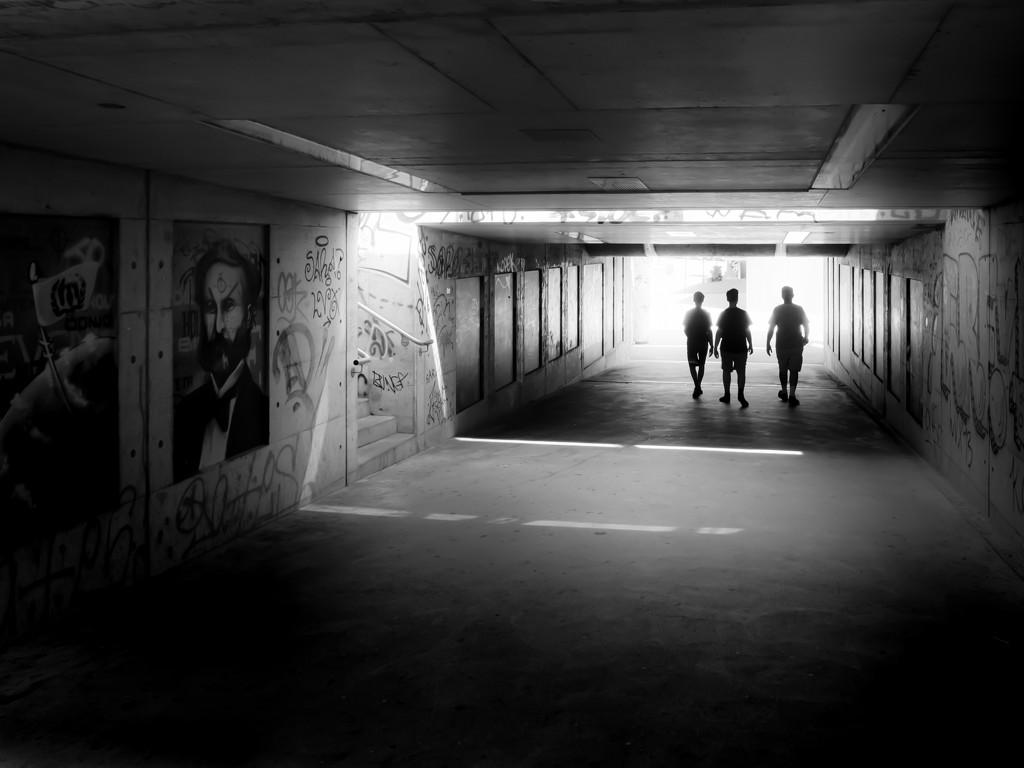 walking in Geneva... by northy