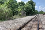 12th Aug 2019 - Railroad tracks