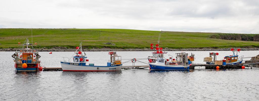 Aithsvoe Pier Fleet by lifeat60degrees