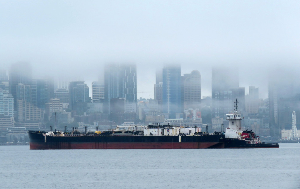 Foggy Cover by seattlite