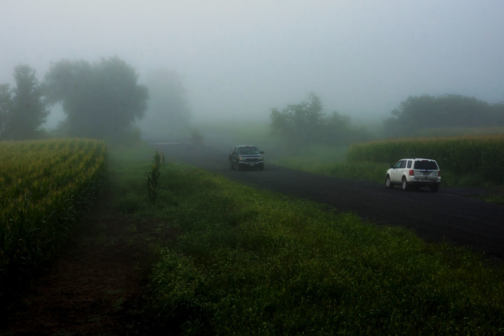 Foggy Day on the Road by farmreporter