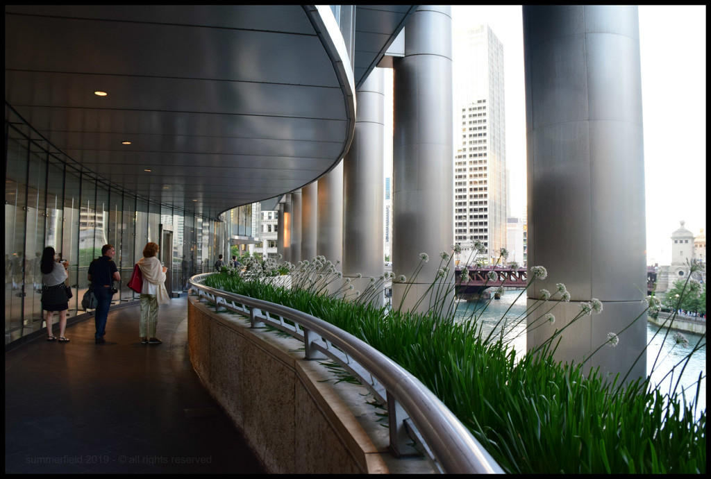 curves, swirls, lines, pillars and chives by summerfield