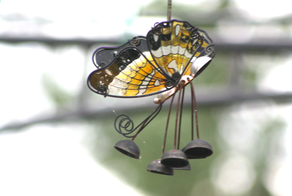 No butterflies - hang a butterfly chime by bruni