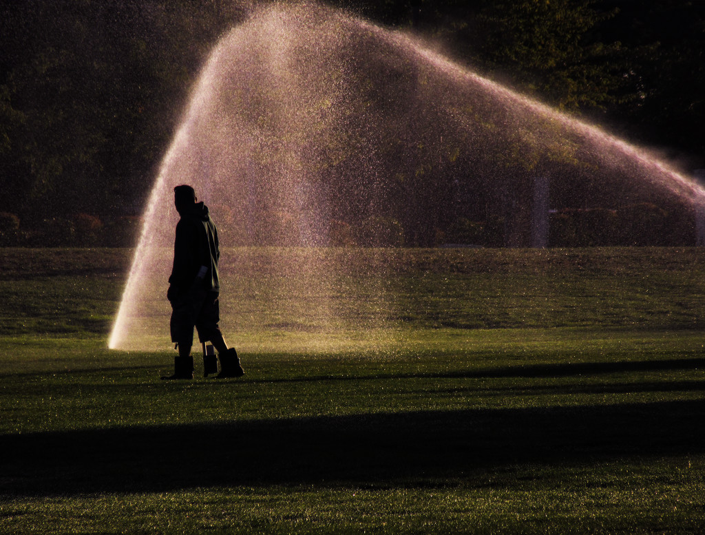 Sprinklers by granagringa