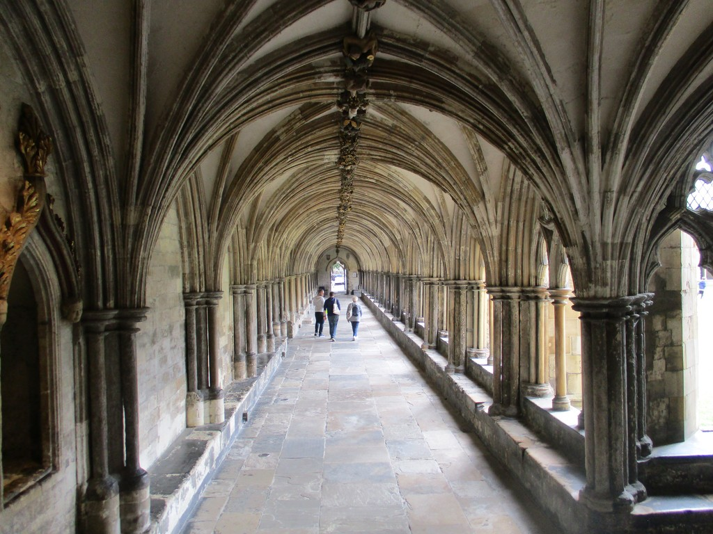 Cloisters Norwich  by foxes37