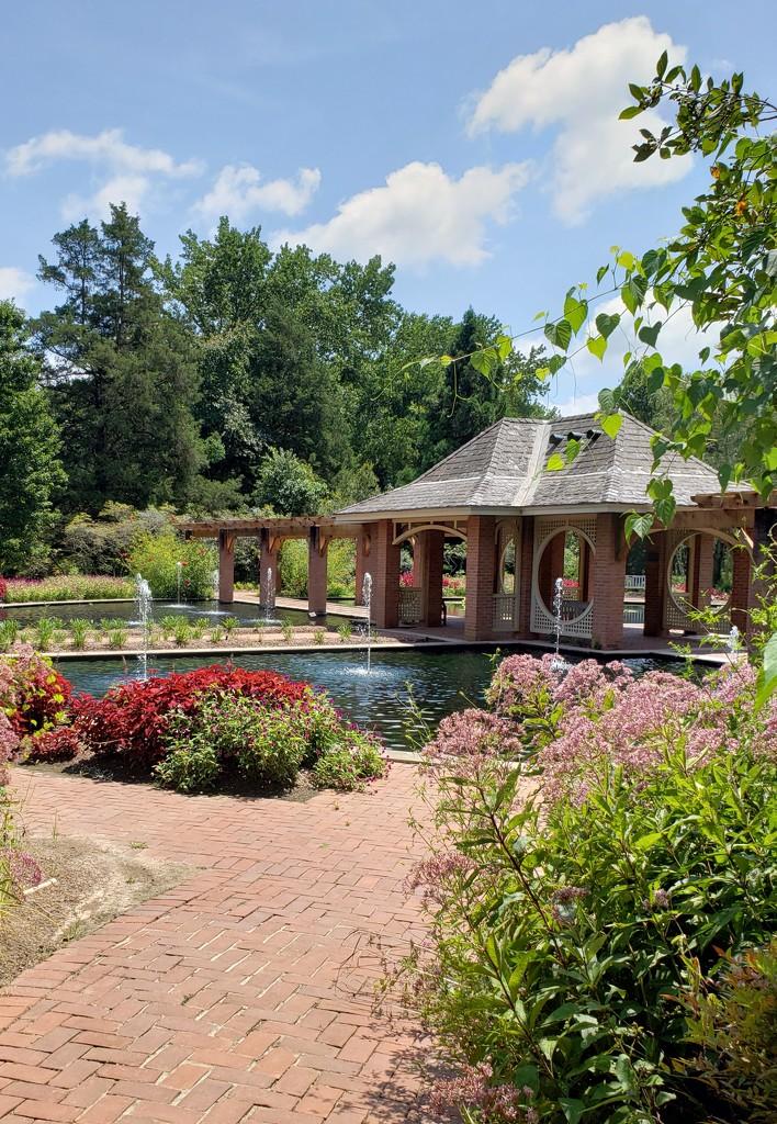 Aquatic Garden by dsp2