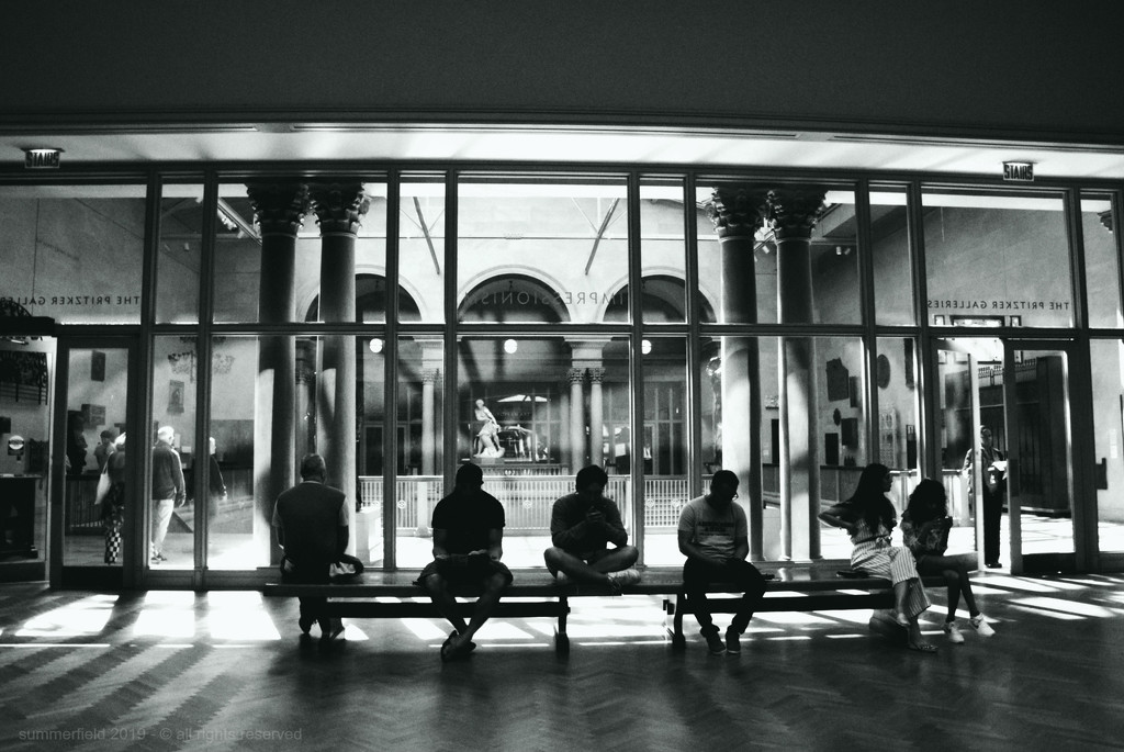 people on bench by summerfield