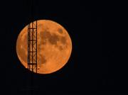 14th Aug 2019 - Climb to the Moon