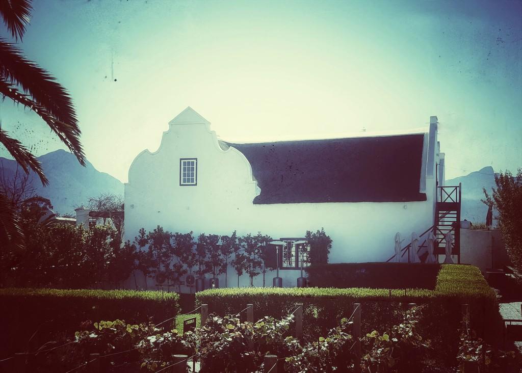 Cape Dutch  by salza