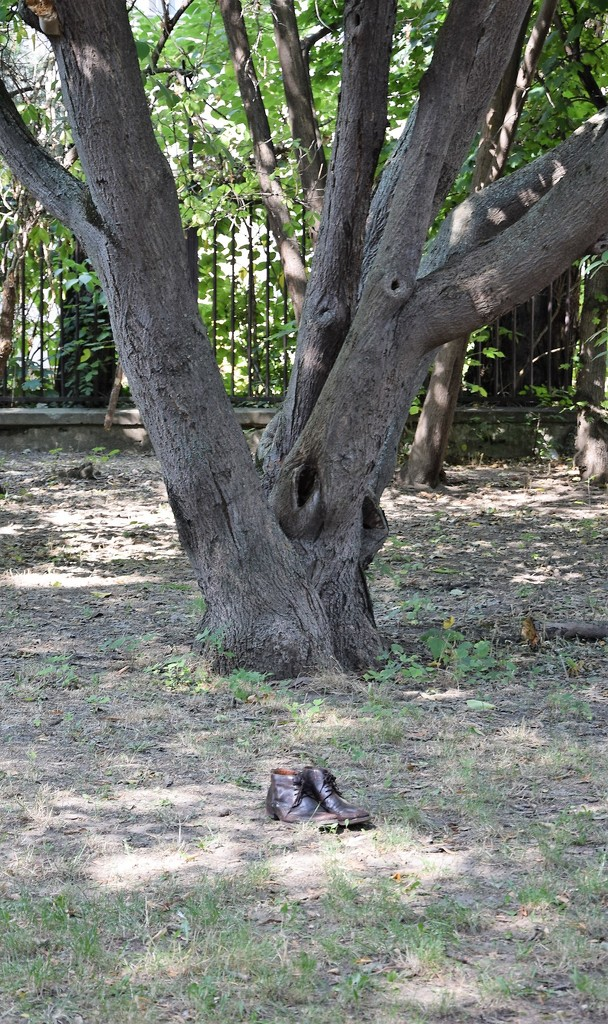 A pair of shoes is looking for its owner .... :-) by kork