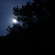 15th Aug 2019 - Last nights moon