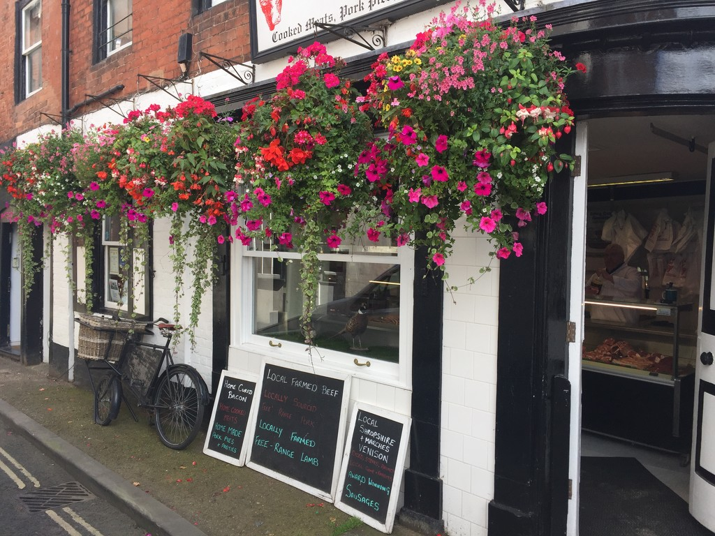"""This butchers shop has a good display for the """"Ludlow in bloom"""" competion by snowy"""