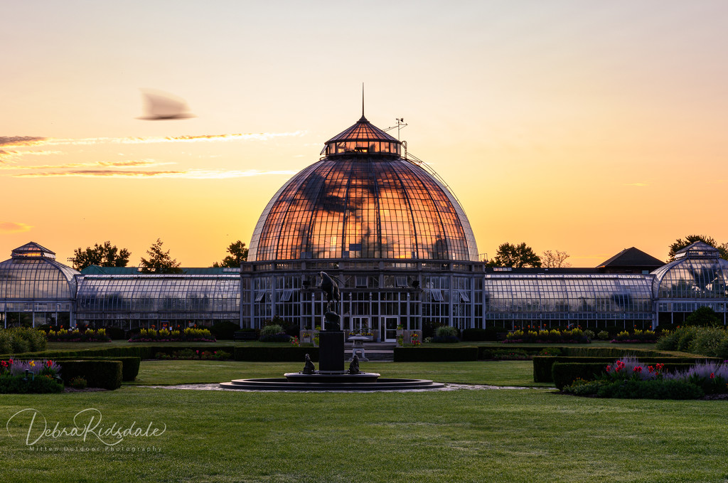 Belle Isle Conservatory at Sunrise  by dridsdale