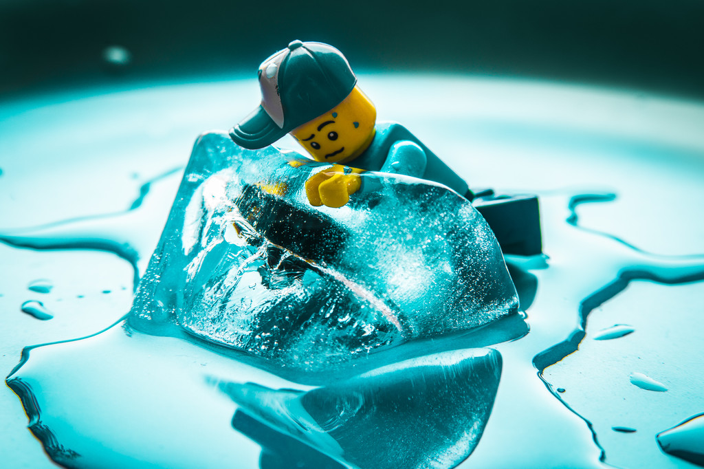 (Day 183) - Freeze Frame by cjphoto