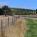 The Rural Fence